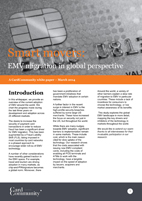 Smart Movers: EMV migration in global perspective